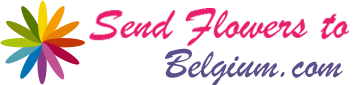Send Flowers To Belgium